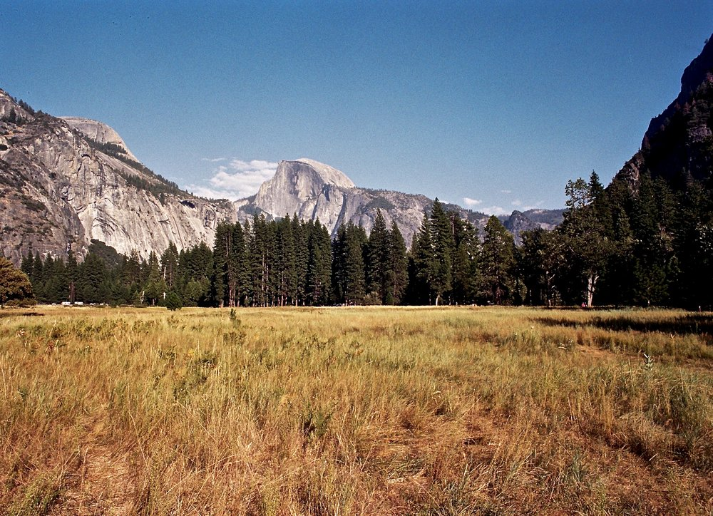 Half Dome from Yosemite Valley, Olympus OM-2n