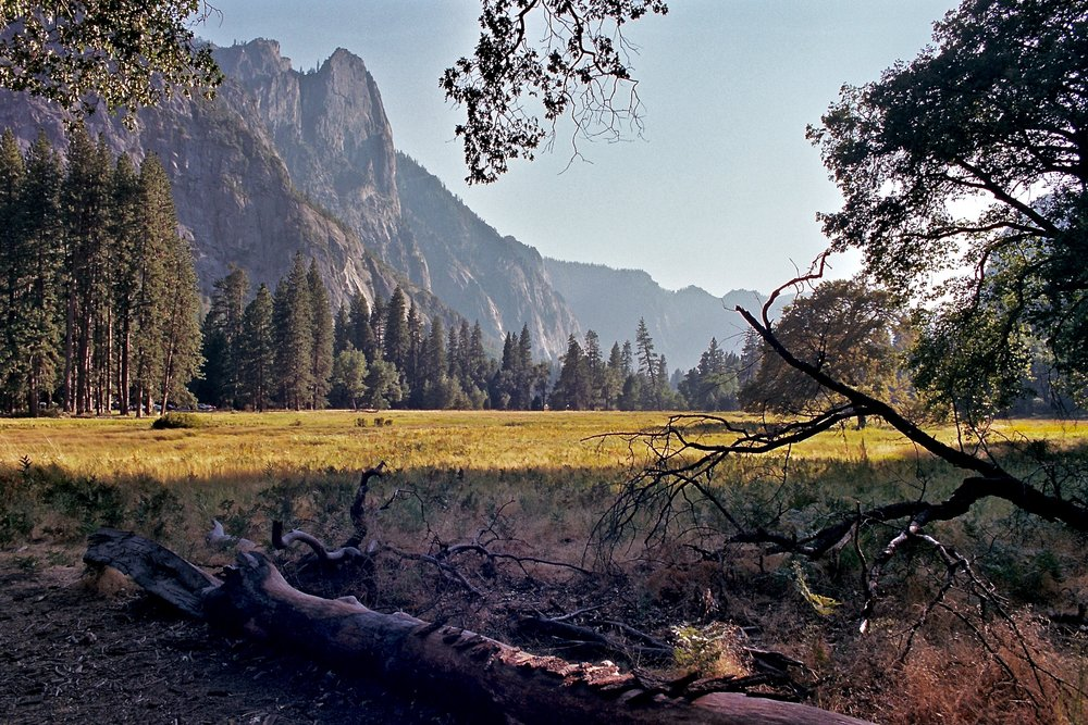 Yosemite Valley, Olympus OM-2n