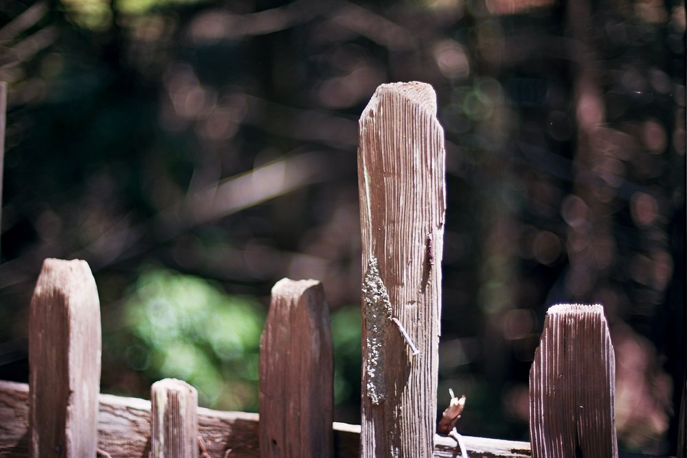 Old fence at Ft. Ross