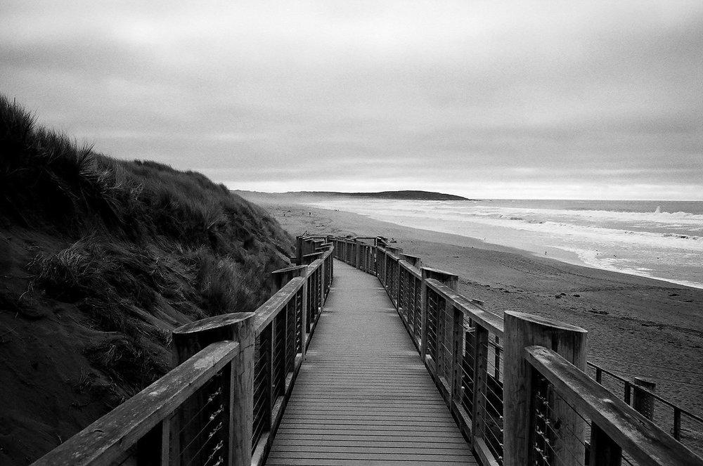 Bodega Dunes, Leica M4, 50 Summicron, Kodak Tmax 400