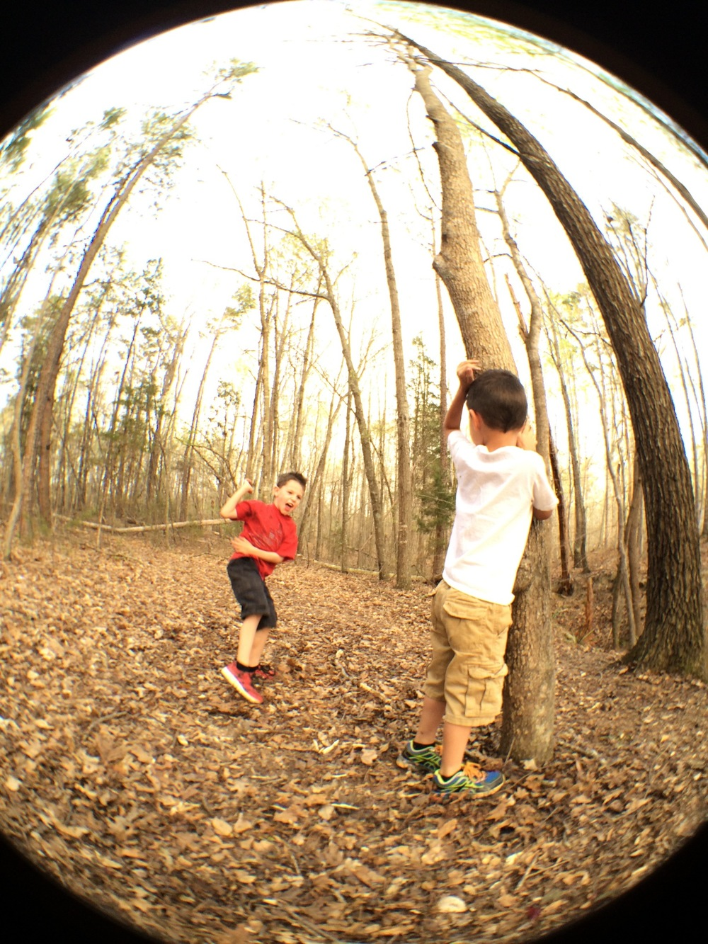 boys in woods.jpg