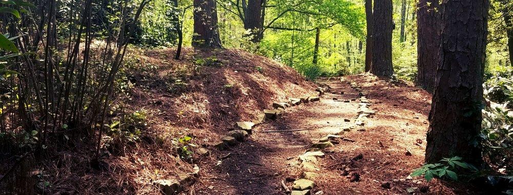 pathway (2).jpg