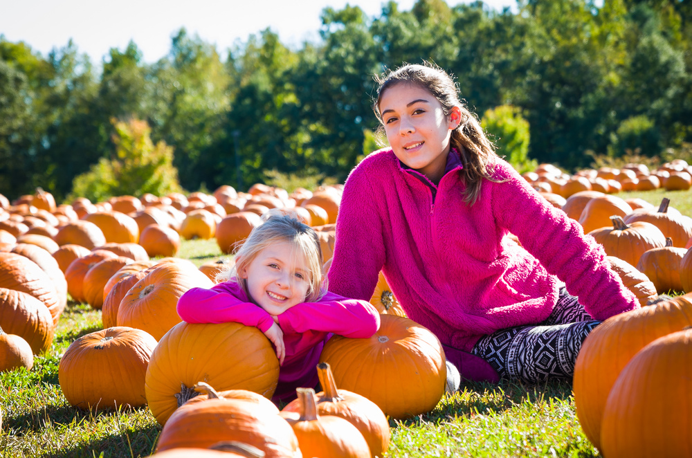 Pumpkin Picking 2014-024.jpg
