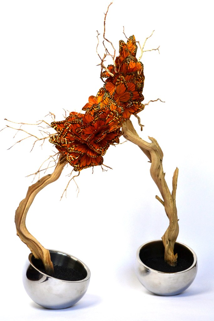 Res17-butterflysculptures.jpg