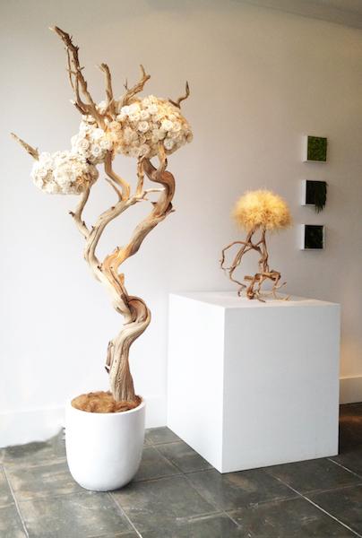Com15-Balsa Wood Sculpture-studio.JPG