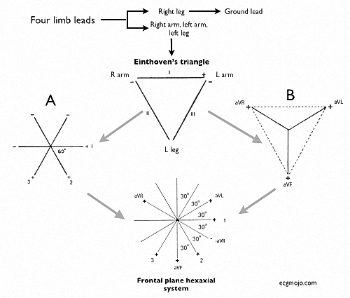 Figure_7. How six frontal leads are derived from four limb leads. The frontal leads are located in a coronal (frontal) plane.