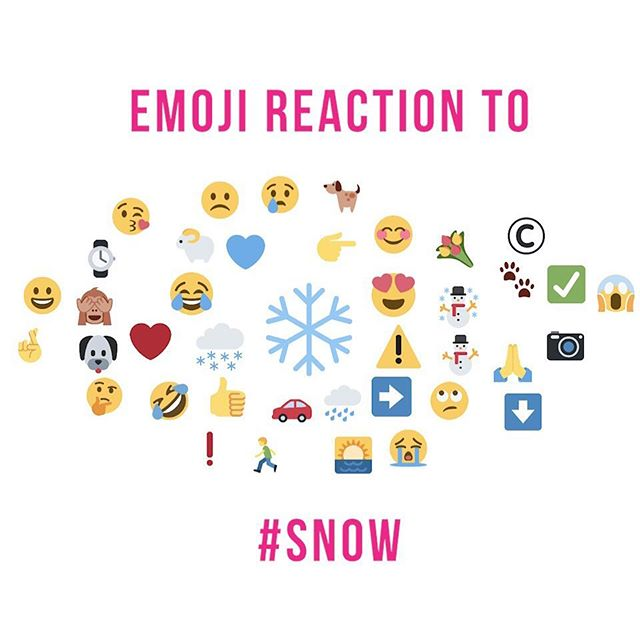 Welcome to the weekly Emoji Report! We have been tracking the biggest topics in the news this week, to see what you have been saying🤔 The Emoji Report this week is all to do with #Snow as the majority of the UK has experienced snow for the first time this winter. The ❄️ is the biggest emoji on the report this week after weather watchers shared photos or speculated about the snow. The 😂 also makes it onto the report this week, as videos circulate of people braving the snow, and sometimes failing… Finally, we are not short of animals on the report this week, after the 🐶 , the 🐐 and the 🐾 all make it onto the report , as twitter users share how pets and farms are dealing with the snow. • • • #Startup #EmojiReport #SociallyPowerful #SocialMediaMarketing #DigitalMarketing #CreativeAgency #Snow #Snowmegeddon #UKSnow #Dog #Goat #Animals #Cute #Funny #Emoji