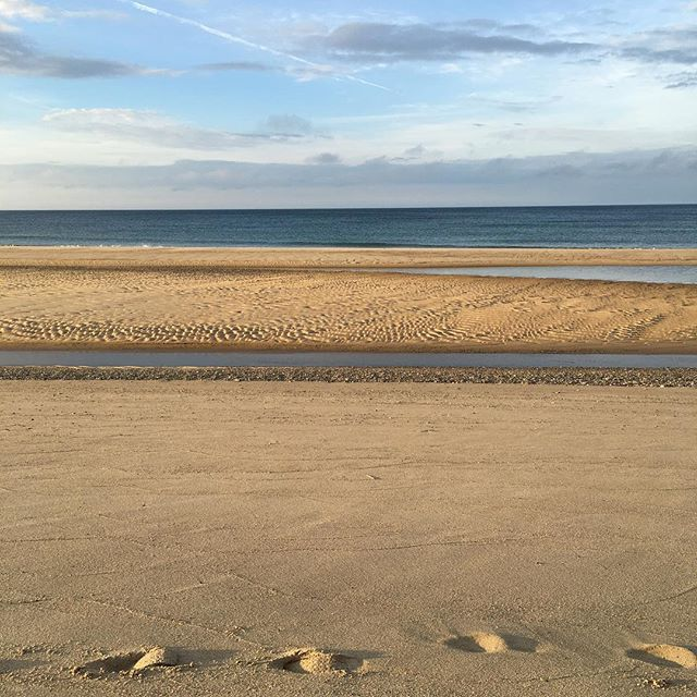 Why hello Atlantic.... #nofilter #icean #beach #sand #ocean #love #footprints #footsteps #sand #water #freshair #breathe #truro #boston #ma #usa #travel #adventure #seals