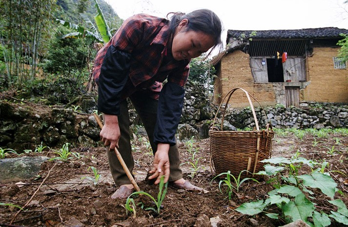 Guangdong Agricultural Pollution Control image copyright: World Bank