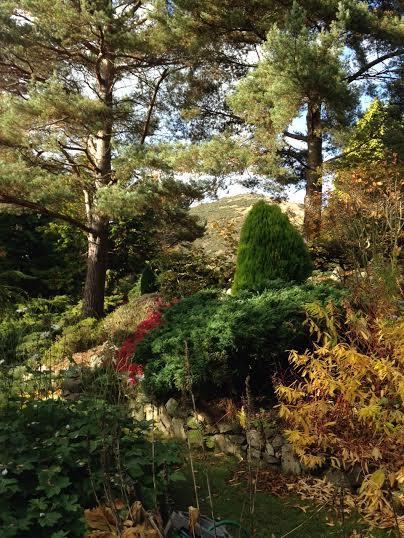 secret garden5.jpeg