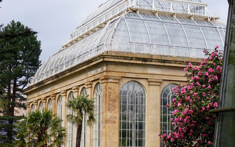 Royal Botanic Gardens 2.jpg