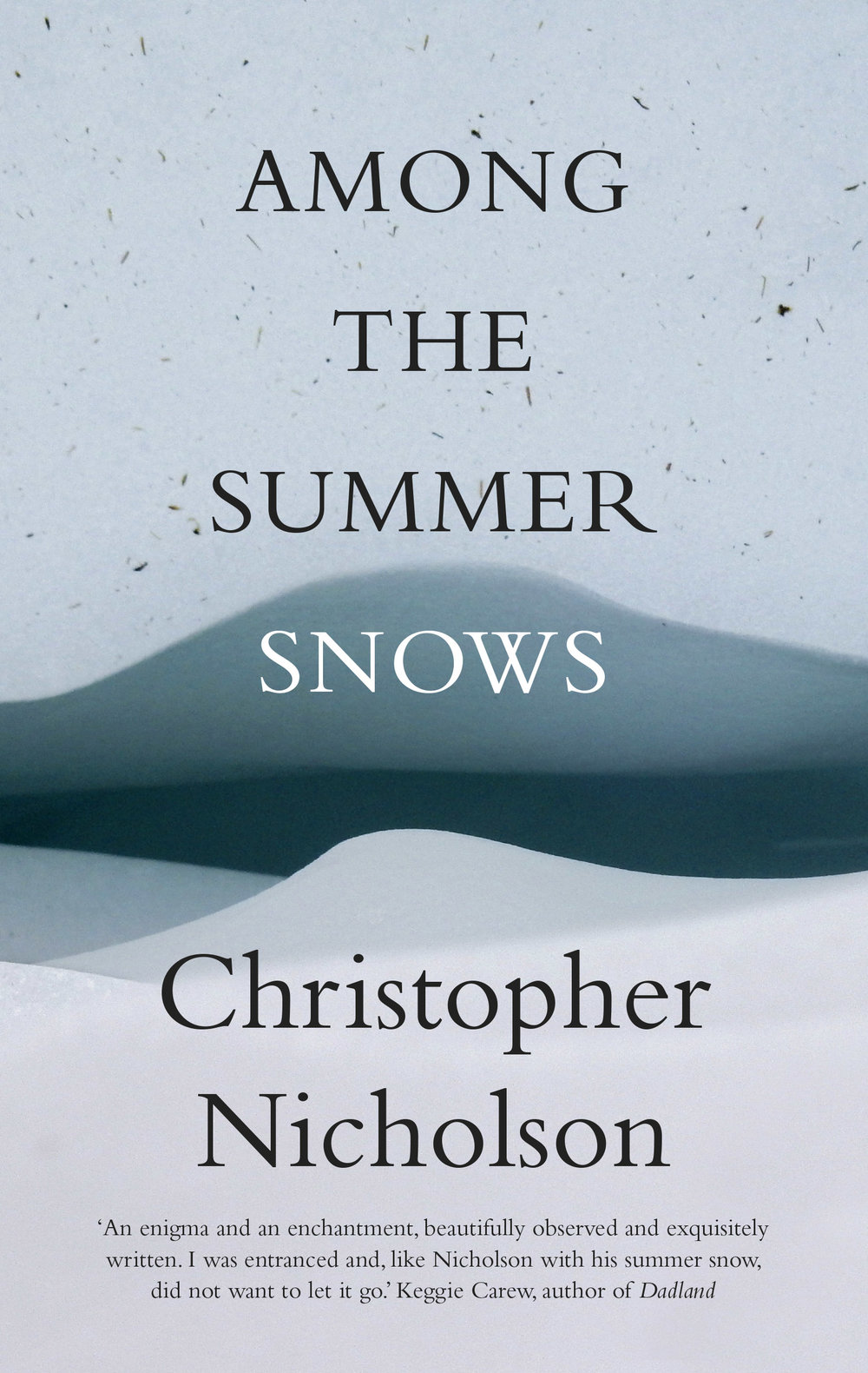Summer Snows front cover.jpg