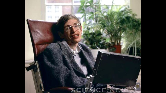 Stephen Hawking, British Physicist - SL8015
