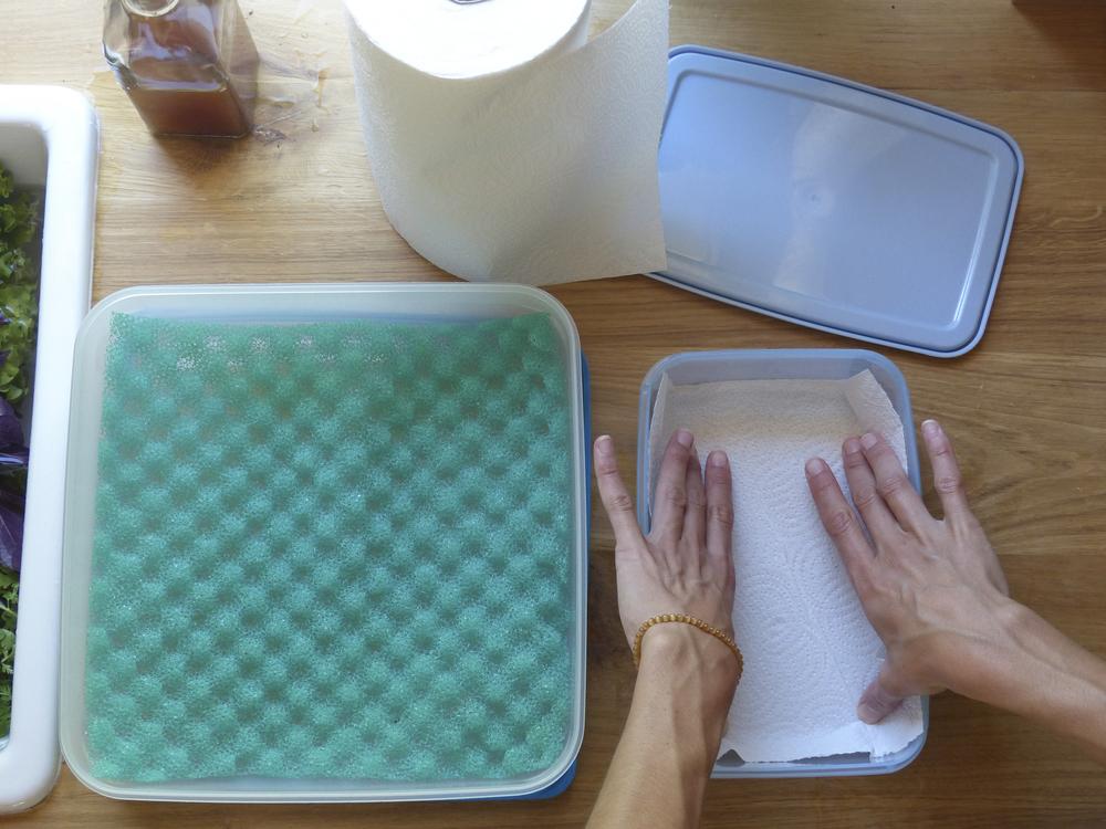 lavar armazenar frutas vegetais poupar tempo durar mais diospiro simple healthy habit
