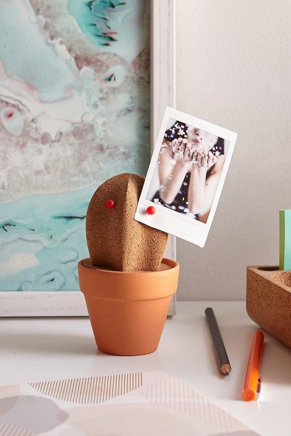 cactus cork organizer