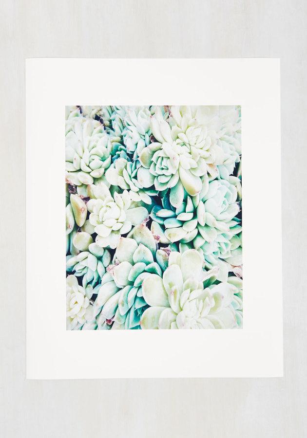 succulent surroundings print