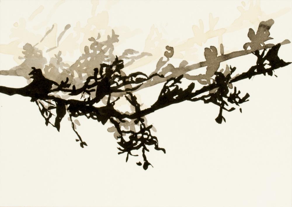 flora #4b_2011.jpg