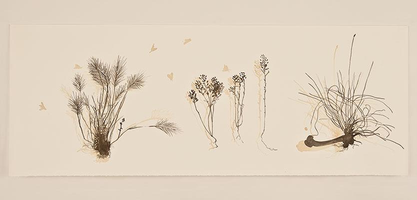 grass & bone  2012