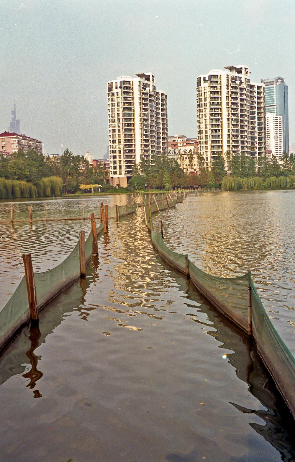 Fishing+in+park+China-2.jpg