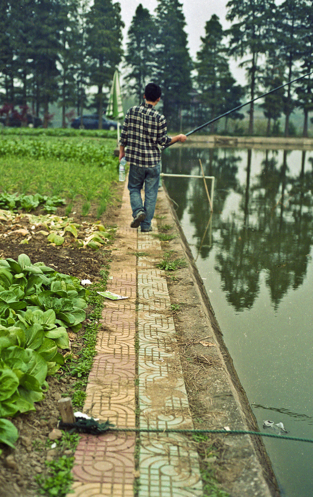 Man+walking+near+fish+pond+China_.jpg
