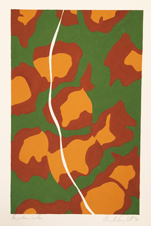 Designer Beans, Camouflage