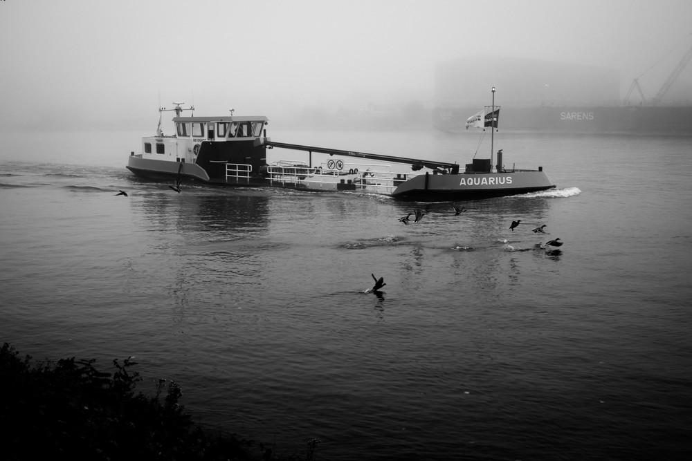 Viewfinder-fotografie-mist-kanaal-Gent-Terneuzen-geheim-visser-snoekbaars-4