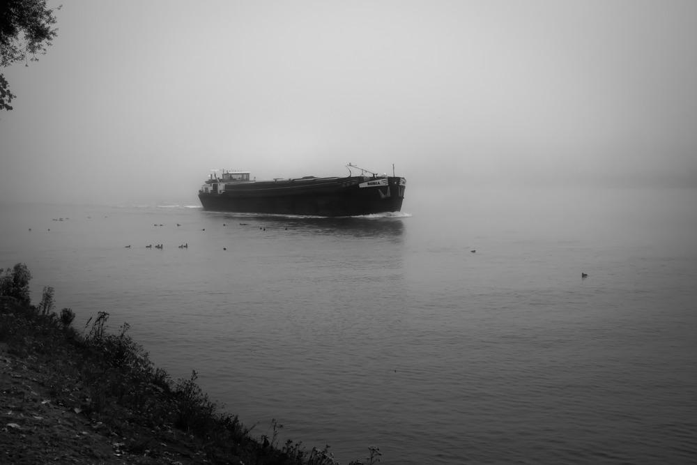 Viewfinder-fotografie-mist-kanaal-Gent-Terneuzen-geheim-visser-snoekbaars-5