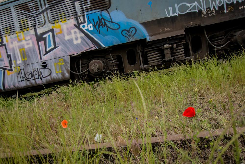 Viewfinder-vergane-glorie-uitgerangeerd-locomotief-gent-zeehaven-klaproos-staal