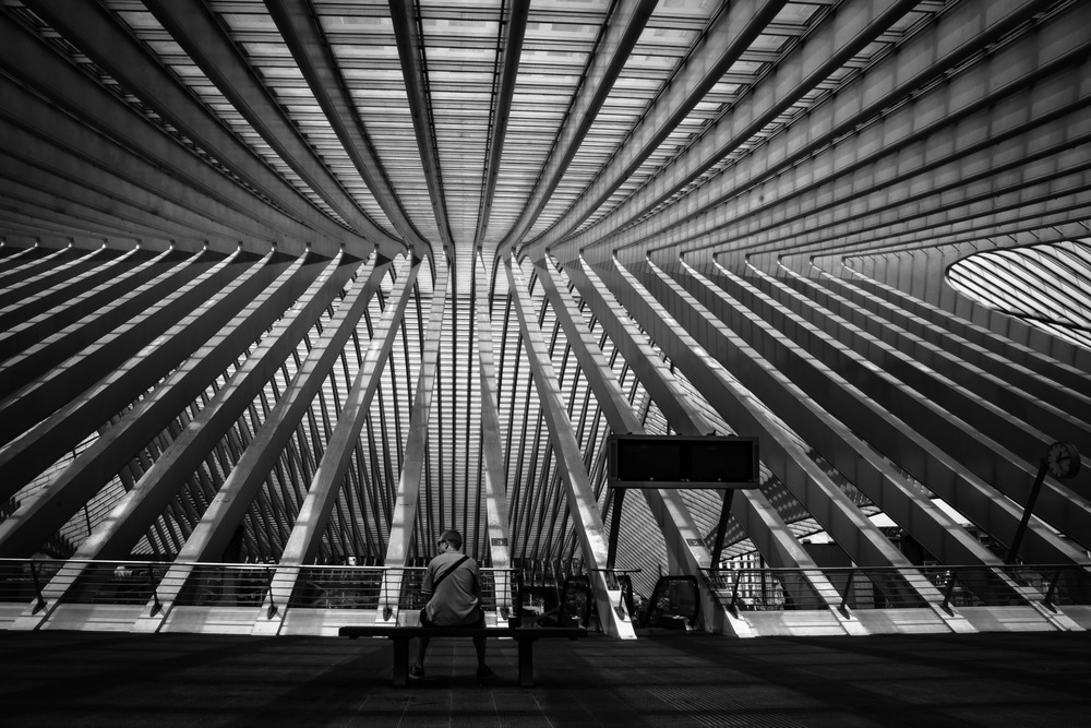 Viewfinder--straatfotografie-station-gare-guillemins-luik-mensen-straatfotografie-binnen-knappe-architectuur