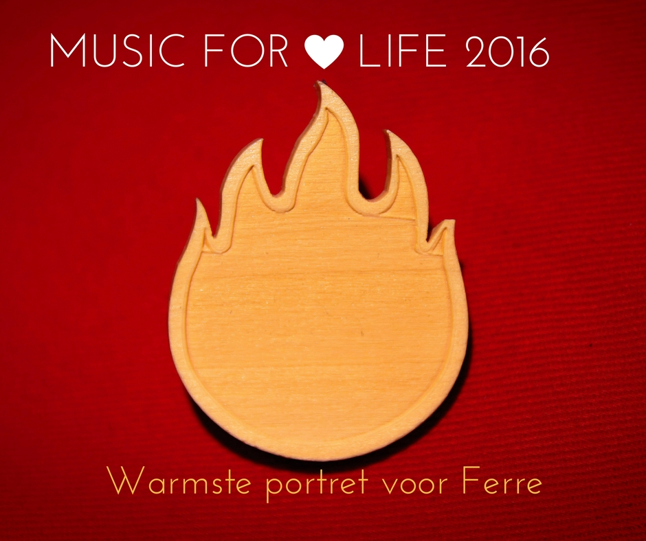 viewfinder-warmste-portret-voor-ferre-music-for-life-2016