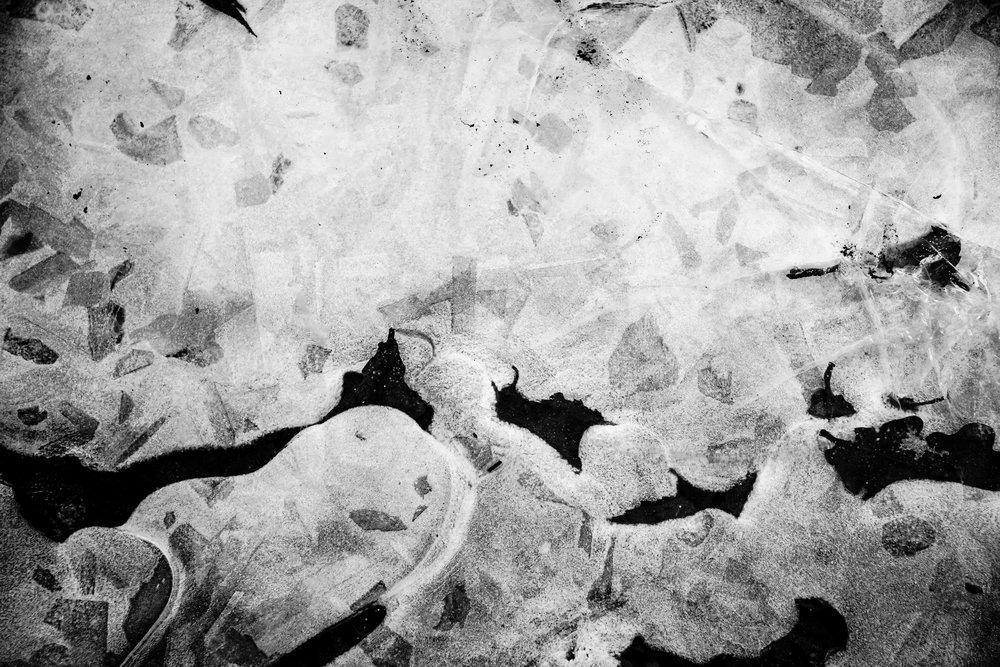 viewfinder-winter-fotografie-schorre-boom-fantasie.jpg