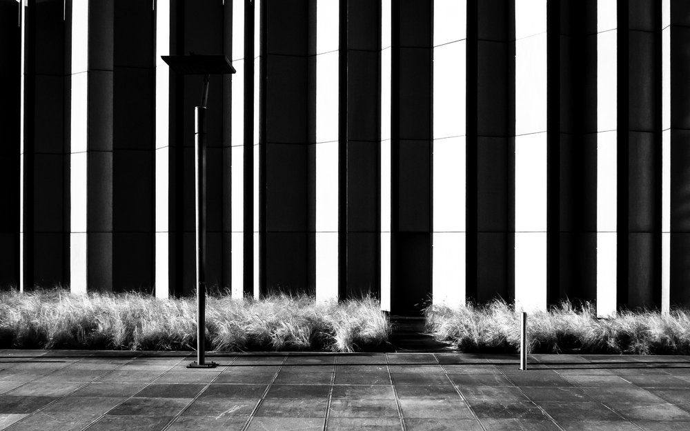 straatfotografie-brussel-kruidtuin-jardin-botanique-19.jpg