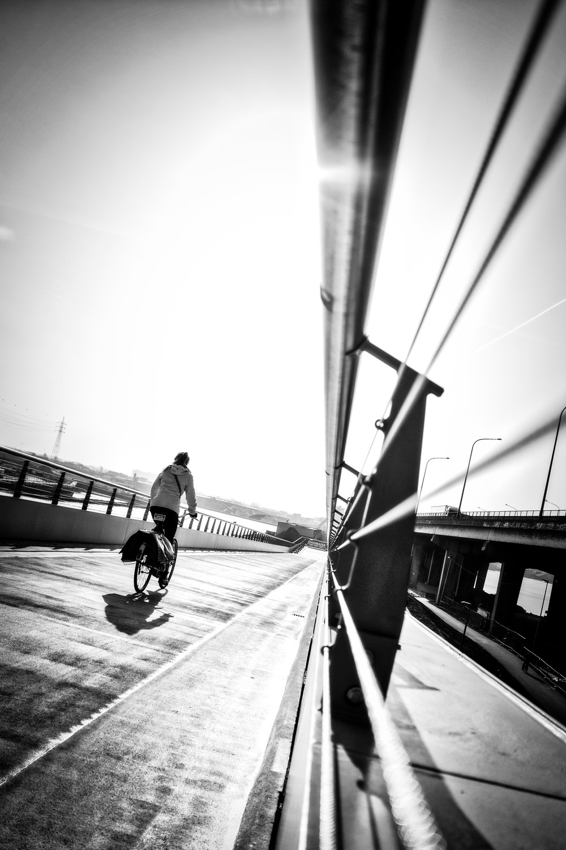 into the sun.jpg