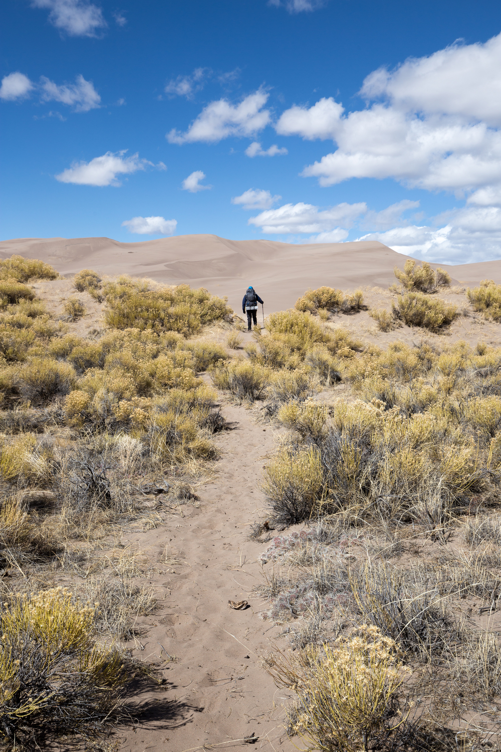 the national parks girl_great sand dunes national park_great sand dunes_hiking_backcountry hike_canon6d.JPG