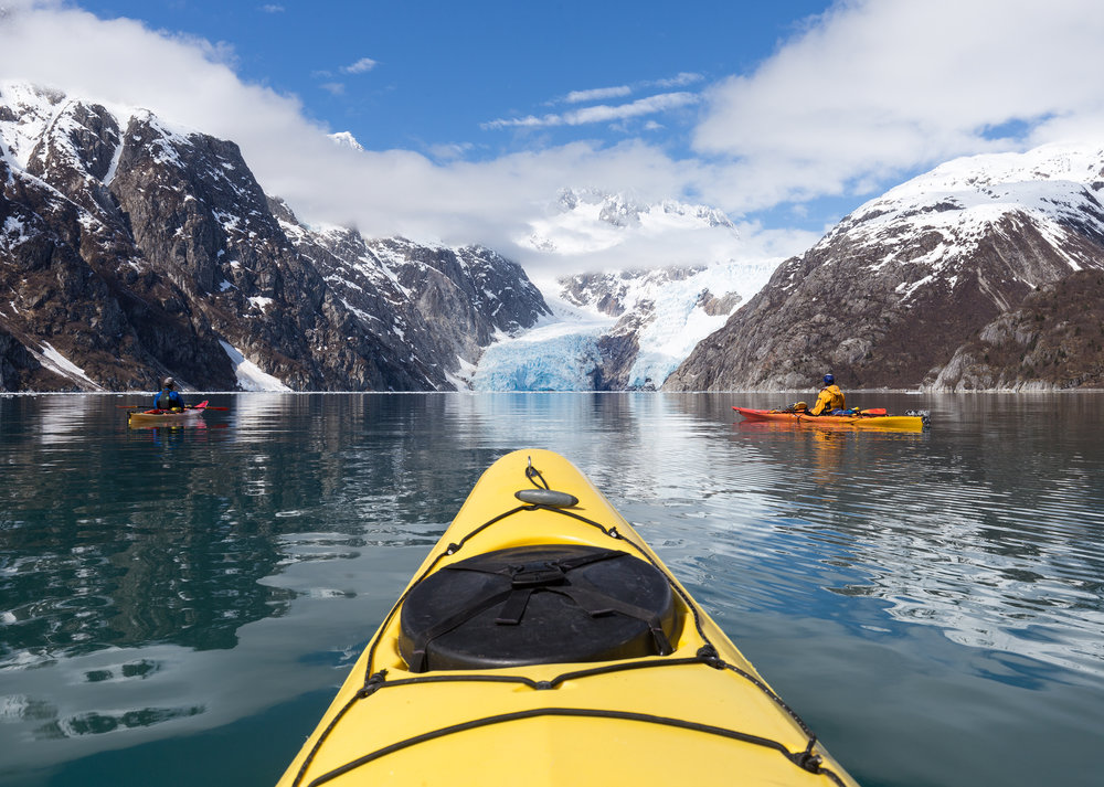 Kenai fjords national park cruise coupons