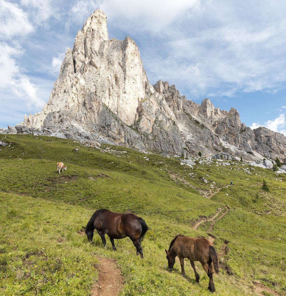 Italian Dolomites Alta Via 1-1.jpg