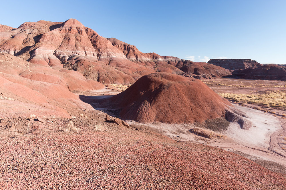 Petrified Forest National Park new-2.jpg