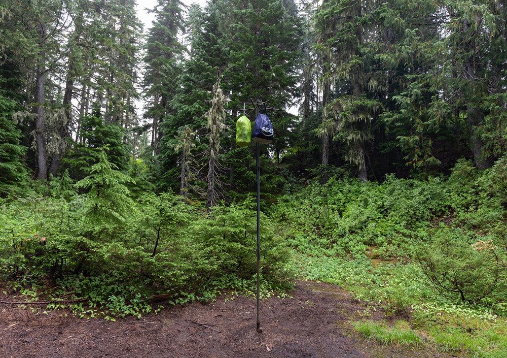Wonderland Trail Mt Rainier-26.jpg