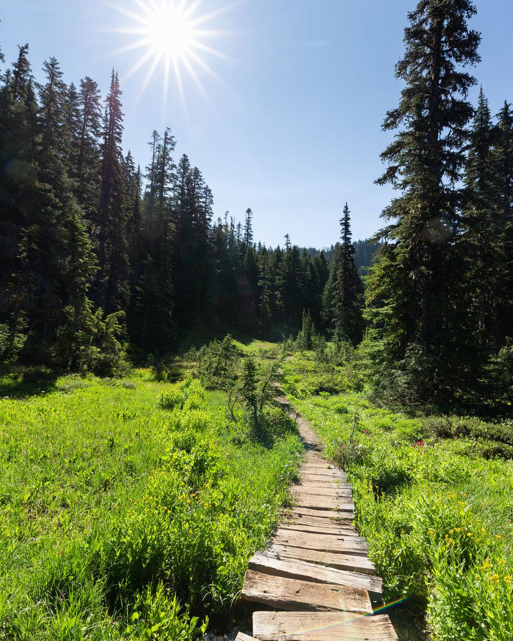 Wonderland Trail Mt Rainier-13.jpg