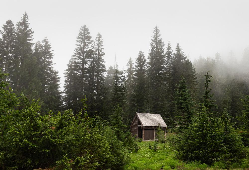 Wonderland Trail Mt Rainier-23.jpg