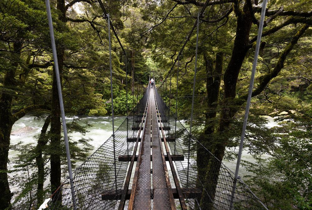 Gillespie Track New Zealand-5.jpg