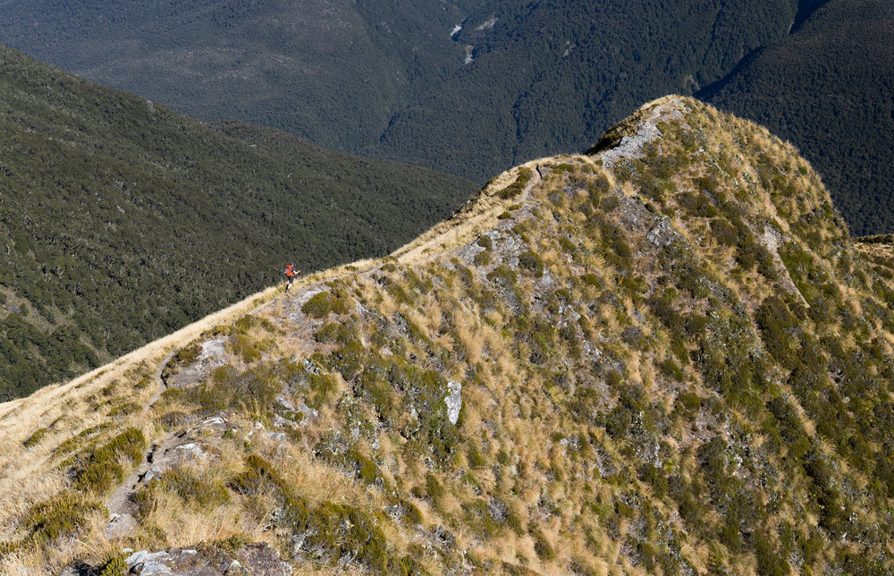 Brewster Hut Mt Aspiring New Zealand-16.jpg
