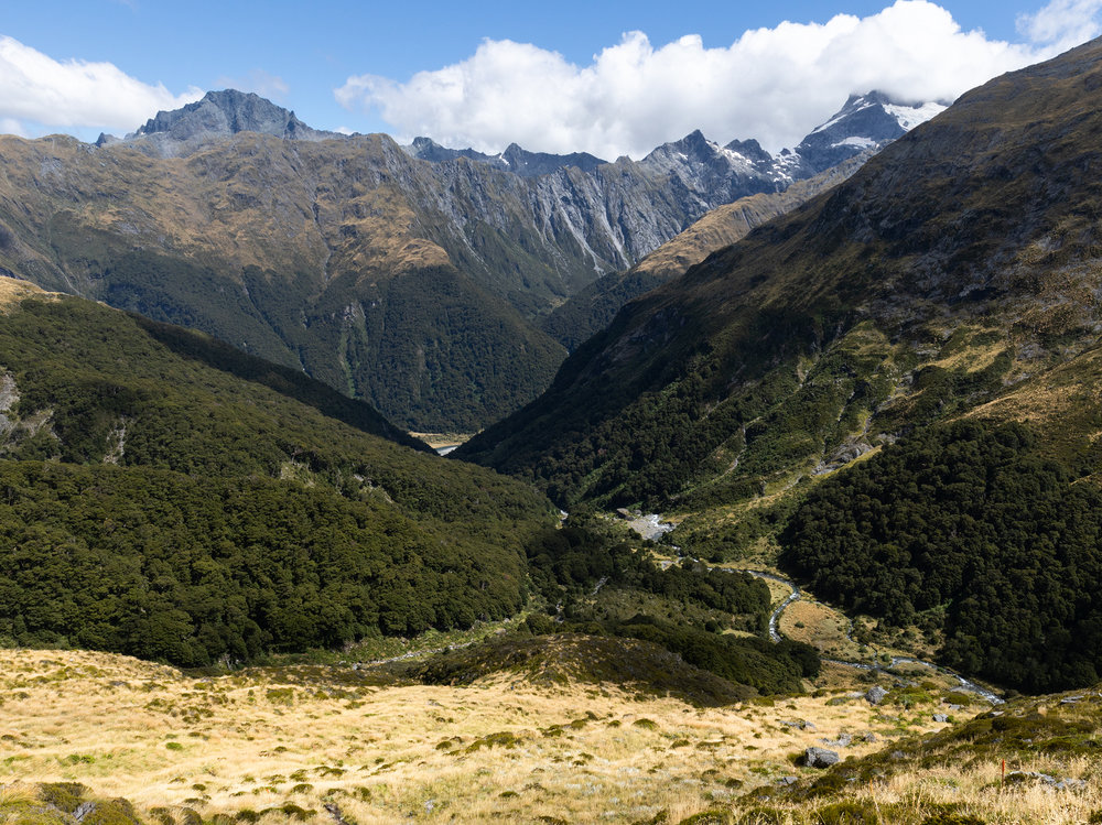 Gillespie Track New Zealand-24.jpg