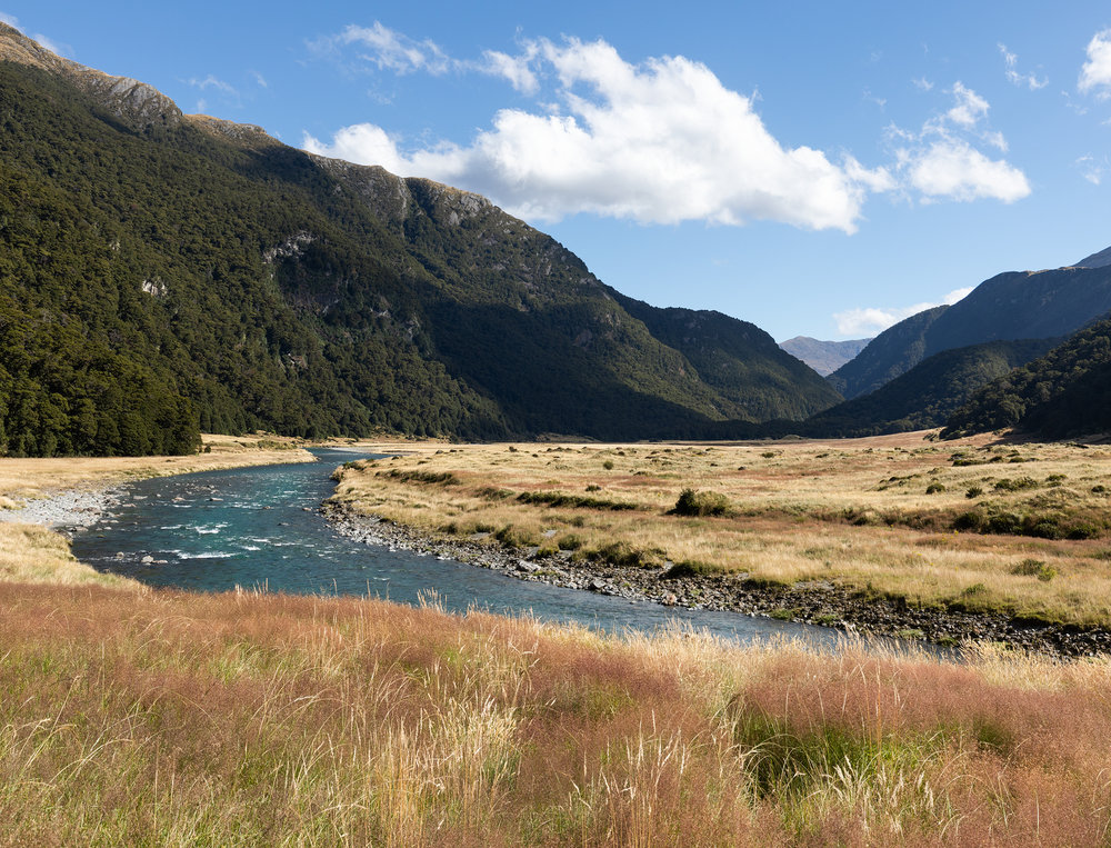 Gillespie Track New Zealand-25.jpg