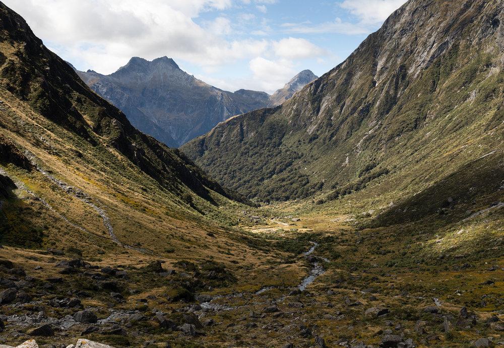 Gillespie Track New Zealand-30.jpg