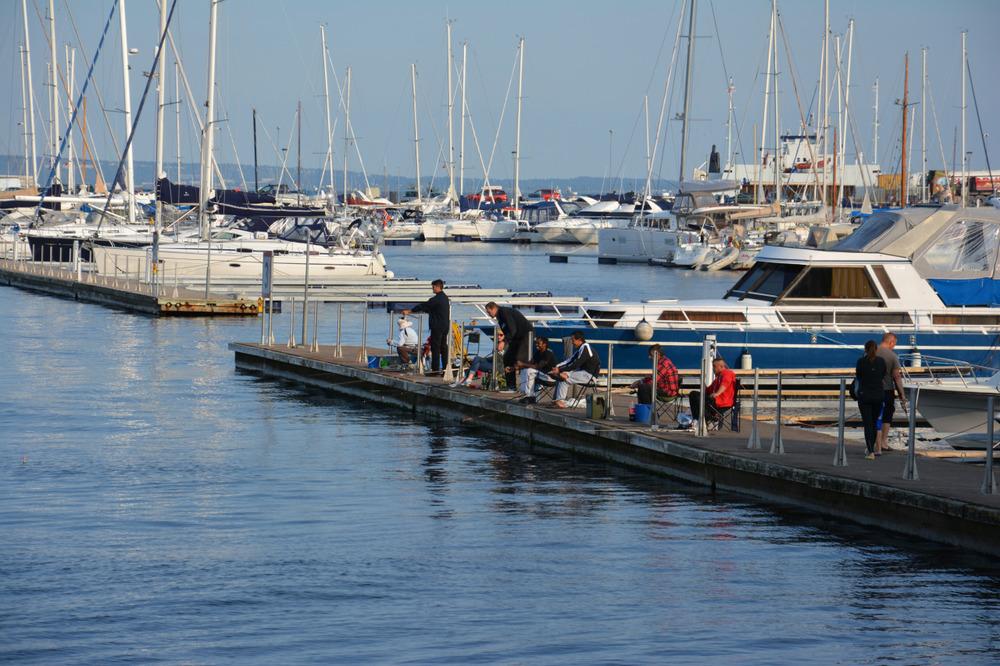 Ivrige fiskere