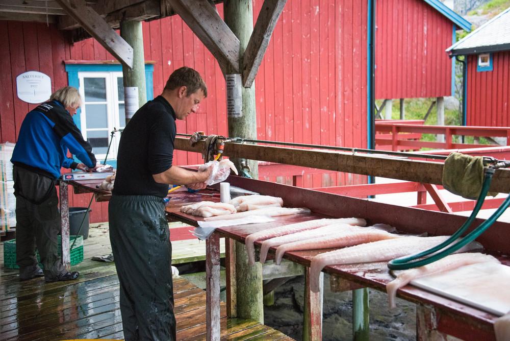 Svensker jobber for føden
