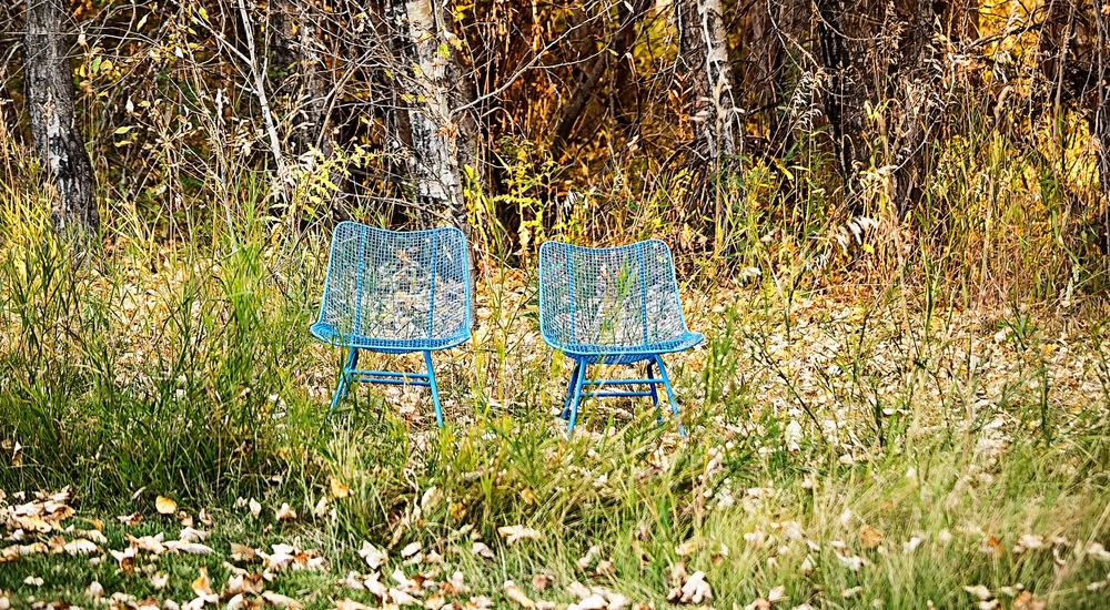 chairs_trees2.jpg