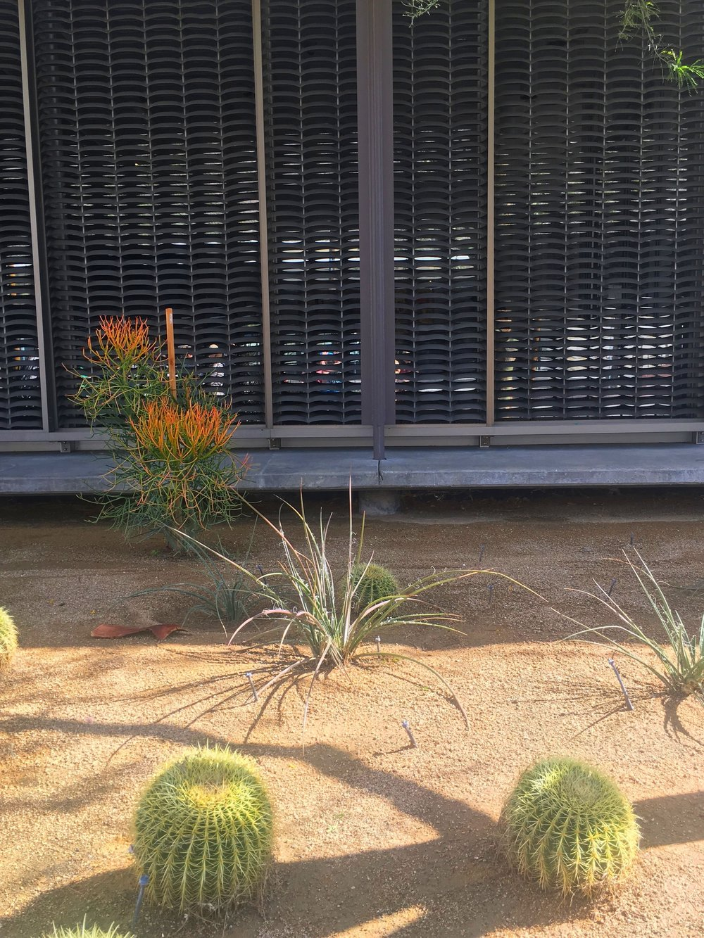Palm Springs Design Museum