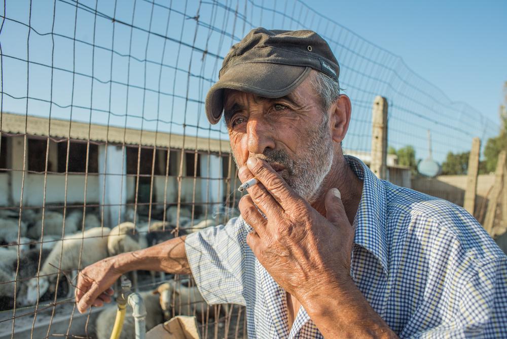 Nel mese di maggio 2014, il sindaco di Portoscuso ha emesso un'ordinanza rivolta a dodici allevamenti - tra questi quello in cui Luigi lavora come pastore - per vietare la commercializzazione, macellazione e distribuzione di pecore, capre e bovini. Il provvedimento, che ordinava anche la distruzione del latte prodotto, è stato deciso a causa di un superamentodei limiti di contaminazione da metalli pesanti,rilevato nel latte degli animali allevati a Portoscuso.